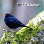 Sol Productions,  SEAMUS BYRNE - JUST BIRDSONG