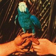 ANDREW BIRD - ARE YOU SERIOUS (VINYL)