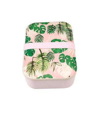 "Rex Inter. Bamboo Brooddoos ""Tropical Palm"" 