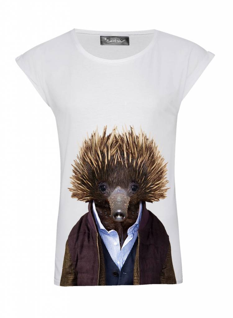 T-Shirt Rolled Sleeve Ladies - Echidna - Zoo Portraits