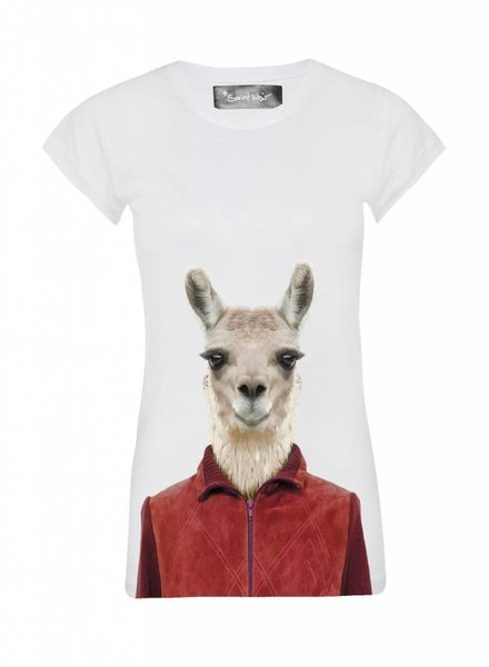 T-Shirt Skinny Cut Damen - Llama - Zoo Portraits