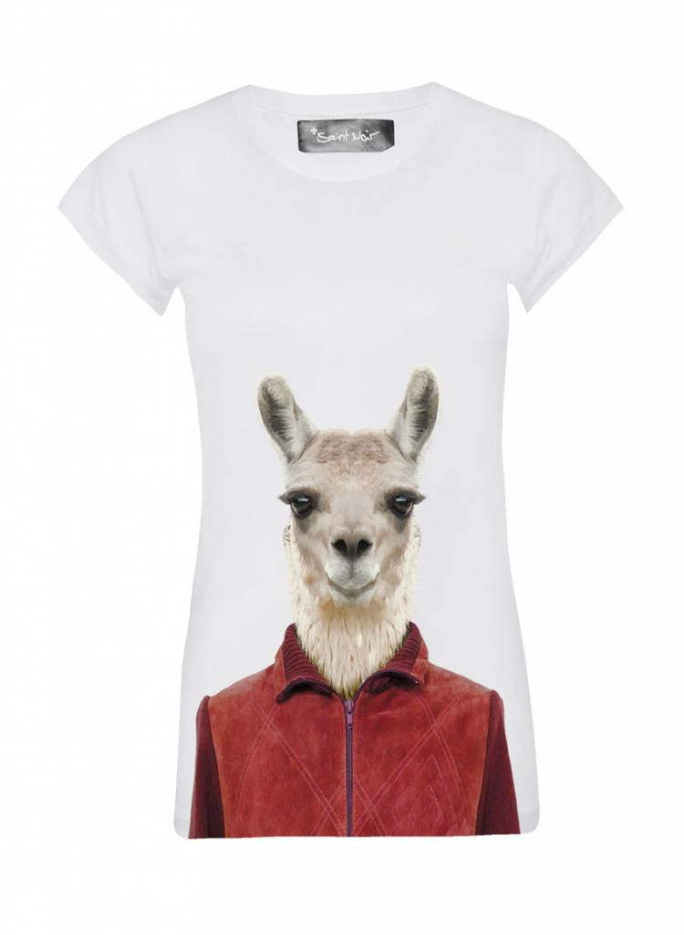 T-Shirt Skinny Cut Damen - Llama - Zoo Portraits