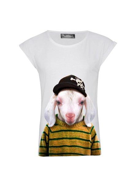 T-shirt Rolled Sleeve Women - Little Lamb - Zoo Portraits