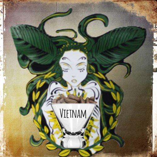 Vietnamese Capsules