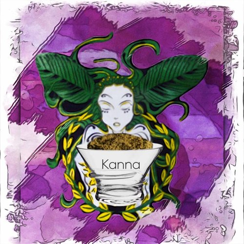 Kanna  /  Sceletium tortuosum
