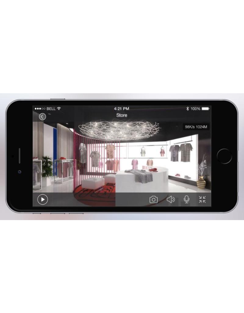 Caméra wifi Cleverdog nouveau modèle, 1280 x 720 pixels et option de stockage en nuage, gris