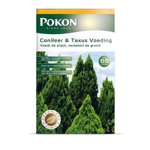 Pokon Conifeer & Taxus Voeding 2,5kg
