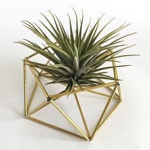 Draadzaken Houder plant of kaars