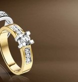 14 krt goud huiscollectie Special Diamanten ring