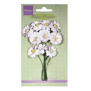 BLUMEN (MINI) UND ACCESOIRES Floret, blanc