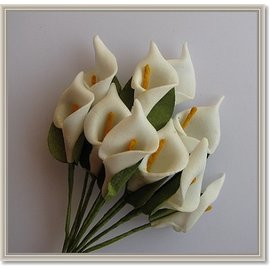 BLUMEN (MINI) UND ACCESOIRES Flores, calla 10 peças