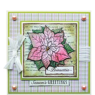 Studio Light Transparent Stempel, Weihnachtsmotive, Poinsettia Collage