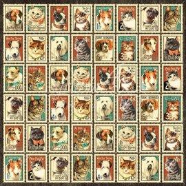 """GRAPHIC 45 Designer de papel """"chovendo gatos e cães - Sr. Bigodes"""", 30,5 x 30,5 cm"""
