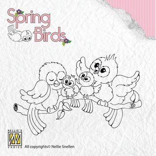 Nellie Snellen Transparent Stempel, Spring-birds Happy Family