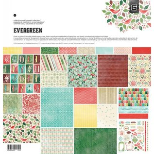 DESIGNER BLÖCKE / DESIGNER PAPER Designerblock, Basic Grey - Evergreen - Collection Pack