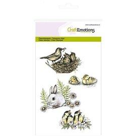 Wild Rose Studio`s A6 stamp: birds, rabbits