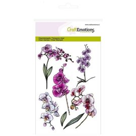 Crealies und CraftEmotions Motif A6, transparent: branches d'orchidées