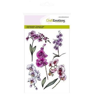 Wild Rose Studio`s A6 stamp: orchid branches