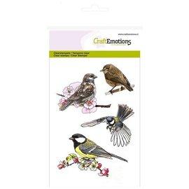 Crealies und CraftEmotions selos transparentes: Birds