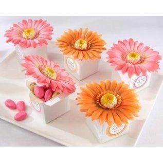 Docrafts / X-Cut Stanzschablonen Dekorativ, Herrliche Blumen