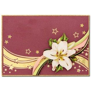 KARTEN und Zubehör / Cards 10 Luxury Doppelkarten mit Umschlägen