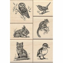 Stempel / Stamp: Holz / Wood madeira Stamp: Wildlife Amigos