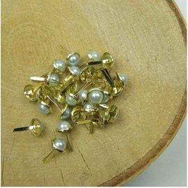 Embellishments / Verzierungen 10 Brads Perlmutt, 8 mm