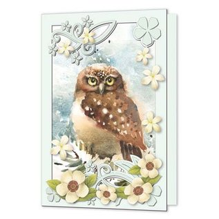 Bilder, 3D Bilder und ausgestanzte Teile usw... Conjunto completo de cartas para 8 cartas de coruja com passepartout
