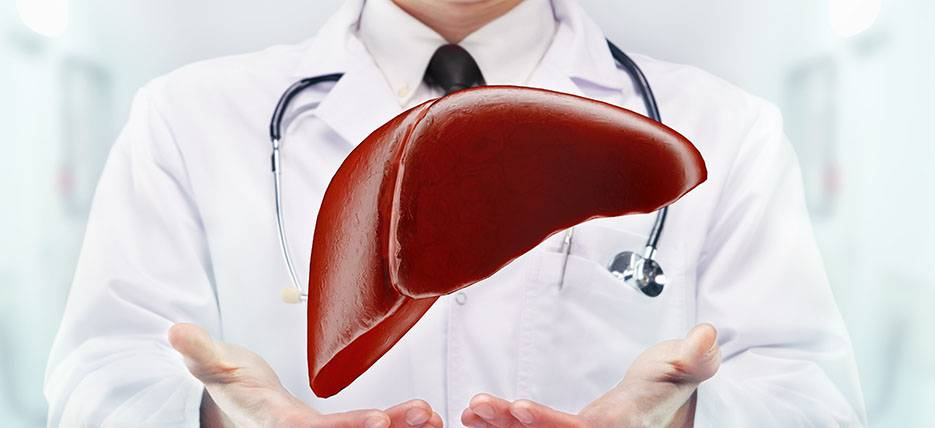 Your liver fights for your health. Join it!