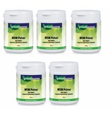 Greenleaves vitamins MSM Pulver (Opti-MSM), 5-pack