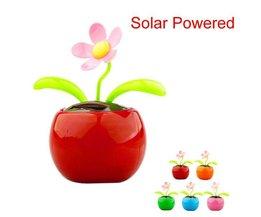 Zonnebloem op zonne-energie voor in de auto
