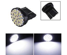 T25 Lamp