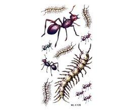 Plak Tattoo Insecten