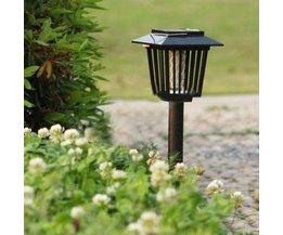 Anti Muggenlamp Zonne Energie