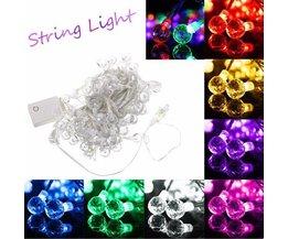 Lang LED Snoer In Verschillende Kleuren 10M