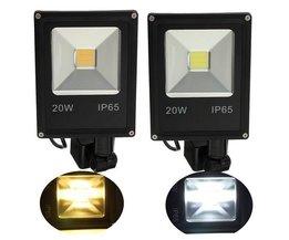 20 Watt Lamp