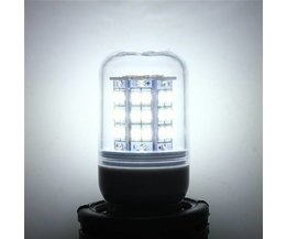 G9 Lamp For LED Lighting