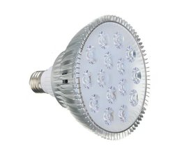 Cultivez Affiche LED Light Lumière Violet