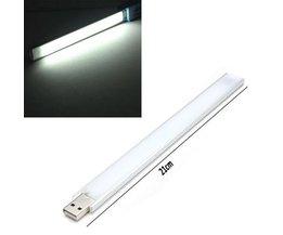 Pur White LED Lumière Fluorescente