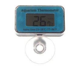 Thermomètre Aquarium Numérique