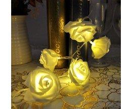 Éclairage Ambiant Avec 10 Roses