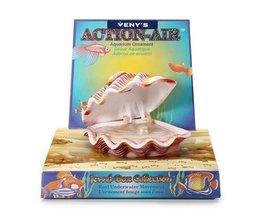 Aquarium Shell