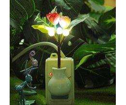 Night Lights Avec Des Fleurs