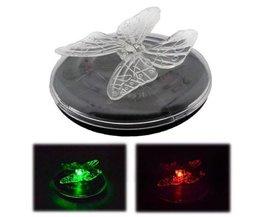 LED Papillon