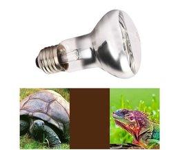 Animaux Lampe UVA