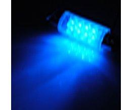 Blaue LED-Lampe