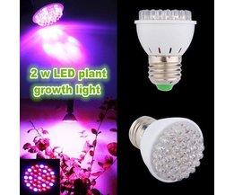 LED Wachsen Licht / Lampe 2W E27 Wachsen