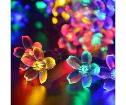Schnur Mit 50 LED-Lampen Mit Solarenergie