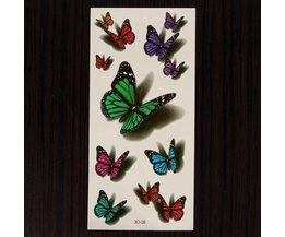 Neptatoeage Schmetterling