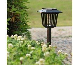 Anti-Moskito-Lampe Solar Energy